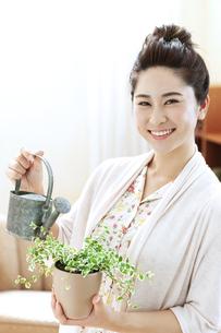 観葉植物に水やりする女性の写真素材 [FYI04639462]