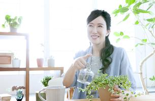 植物に水をやるミドル女性の写真素材 [FYI04639539]