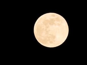 天体のイメージ 満月の写真素材 [FYI04639764]