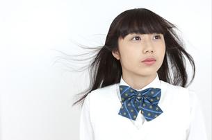 髪をなびかせる女子学生の写真素材 [FYI04640064]