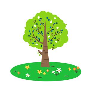 木と草花のイラスト素材 [FYI04640123]