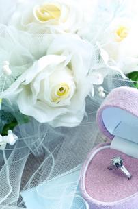 結婚指輪の写真素材 [FYI04640261]