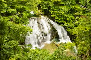 大滝の写真素材 [FYI04640530]