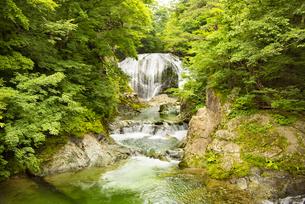 大滝の写真素材 [FYI04640534]