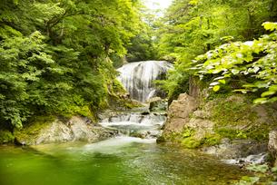 大滝の写真素材 [FYI04640539]