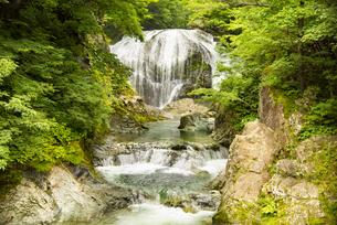 大滝の写真素材 [FYI04640545]