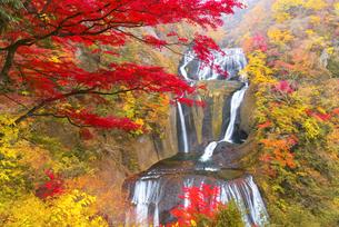 紅葉と袋田の滝の写真素材 [FYI04640765]