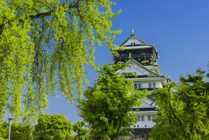 大阪城の写真素材 [FYI04640804]