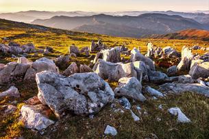 【愛媛県】朝方の四国カルストと岩石の自然風景の写真素材 [FYI04641186]