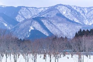 【滋賀県 大津市】雪が積もった冬の比叡山 自然風景の写真素材 [FYI04641191]