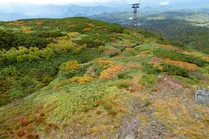 北海道 秋の大雪山旭岳の風景の写真素材 [FYI04641516]