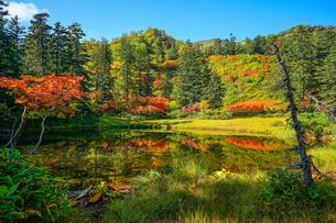 大雪高原温泉滝見沼の紅葉の風景の写真素材 [FYI04642091]