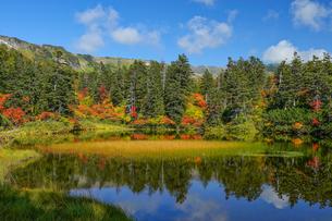 大雪高原温泉緑沼の紅葉の風景の写真素材 [FYI04642092]