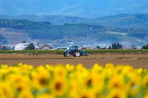 北海道の山々とトラクターとひまわり畑の風景の写真素材 [FYI04642100]
