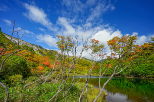 大雪高原温泉沼めぐり式部沼の風景の写真素材 [FYI04642115]