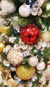 クリスマスオーナメントの写真素材 [FYI04642547]