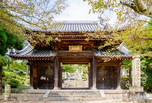 関西の神社仏閣 西宮市 神呪寺 仁王門の写真素材 [FYI04642698]
