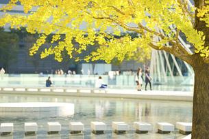 関西の風景 大阪市 都会のオアシス 秋イメージの写真素材 [FYI04642779]