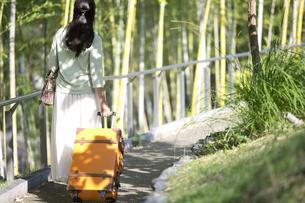 スーツケースを持つ中年女性の後姿の写真素材 [FYI04643012]