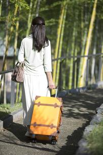 スーツケースを持つ中年女性の後姿の写真素材 [FYI04643013]