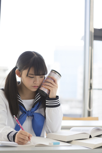 勉強する女子校生の写真素材 [FYI04643369]