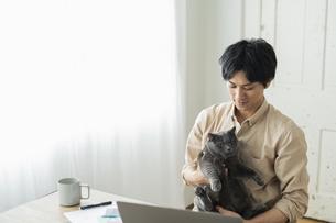 リモートワークをする男性と猫の写真素材 [FYI04644072]
