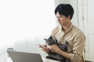 リモートワークをする男性と猫の写真素材 [FYI04644076]