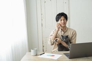 リモートワークをする男性と猫の写真素材 [FYI04644127]