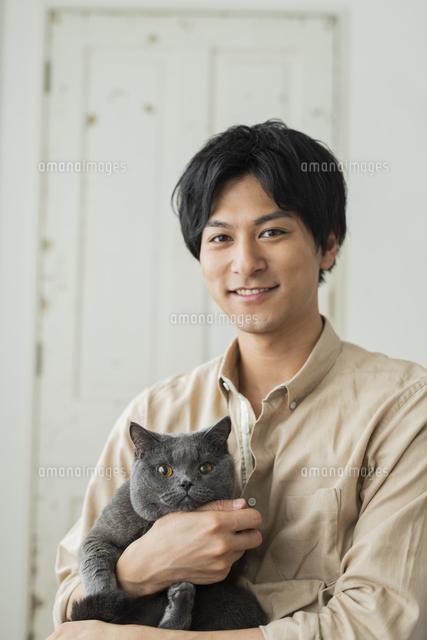 リモートワークをする男性と猫の写真素材 [FYI04644129]