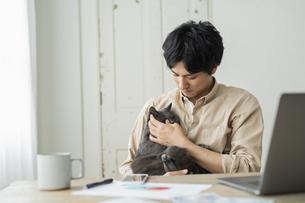 リモートワークをする男性と猫の写真素材 [FYI04644143]