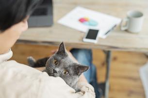 リモートワークをする男性と猫の写真素材 [FYI04644176]