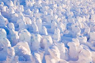 蔵王樹氷の写真素材 [FYI04644613]
