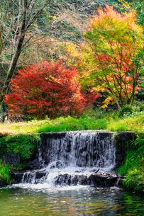 湯平温泉(大分県由布市)、花合野川の滝の紅葉の写真素材 [FYI04644667]