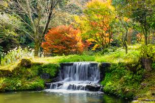 湯平温泉(大分県由布市)、花合野川の滝の紅葉の写真素材 [FYI04644669]