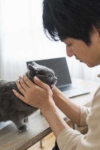 リモートワークをする男性と猫の写真素材 [FYI04644685]