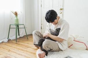 リモートワークをする男性と猫の写真素材 [FYI04644785]