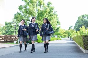 女子高生のポートレートの写真素材 [FYI04645019]