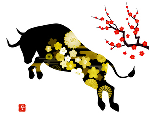 丑年の年賀状素材 突進する雄牛と梅の花のイラスト素材 [FYI04645120]
