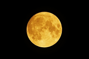 中秋の名月 2020の写真素材 [FYI04645124]