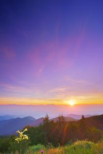 美ヶ原高原のウバユリと朝日と浅間山遠望の写真素材 [FYI04645250]
