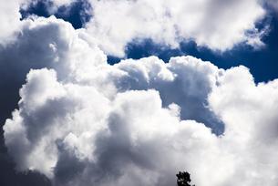 湧き上がる入道雲の写真素材 [FYI04645288]