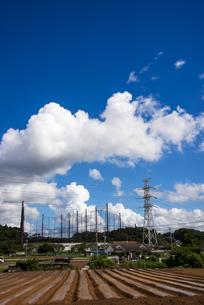 都市近郊の田園風景と夏の空の写真素材 [FYI04645320]