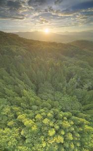 パノラマ展望台付近から望む夕日と樹林と塩田平遠望の写真素材 [FYI04645331]