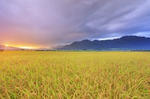 八木沢の田園と雲間の朝日の写真素材 [FYI04645534]