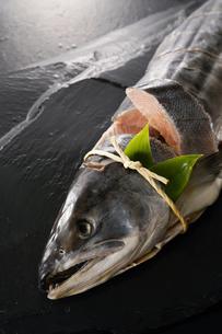 鮭の山漬けの写真素材 [FYI04645551]