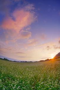 前山の蕎麦畑と朝日とハートの朝焼け雲の写真素材 [FYI04645619]