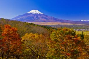 二十曲峠の紅葉と富士山の写真素材 [FYI04646151]