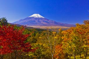 二十曲峠の紅葉と富士山の写真素材 [FYI04646152]