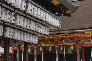 八坂神社 本殿の写真素材 [FYI04647684]