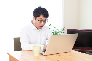 日本人男性の写真素材 [FYI04650330]